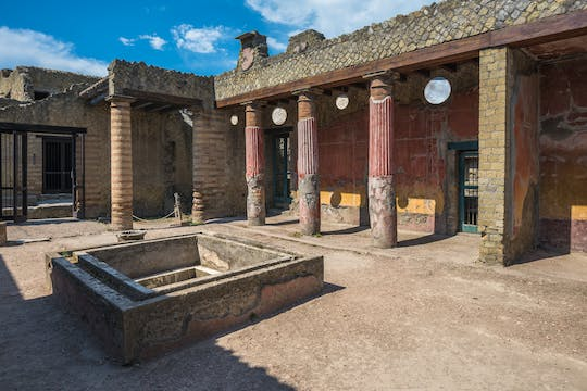 Herculaneum guided tour from Naples