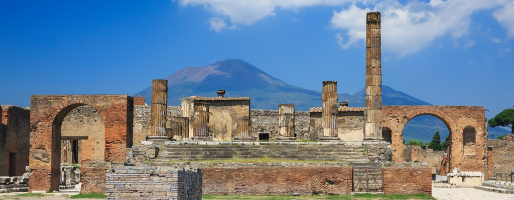 Tour de Pompéia e Vesúvio saindo de Nápoles com pizza no almoço
