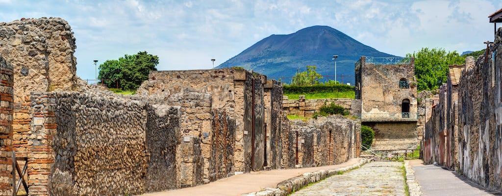 Pompeii and Vesuvius tour from Naples with wine tasting