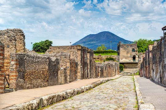 Pompeii and Vesuvius tour from Naples with wine tasting