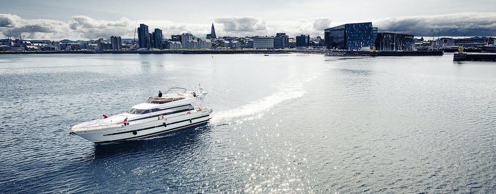 Walvissen spotten op een luxe jachtcruise in Reykjavik
