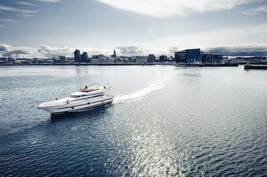 Croisière en yacht de luxe pour observer les baleines à Reykjavik