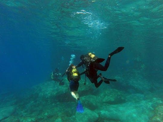 Journée complète de plongée sous-marine d'un bateau à Kusadasi