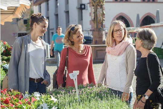 Private guided walking tour in Freiburg