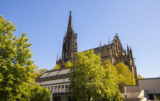 Historische wandeling door Basel met een local