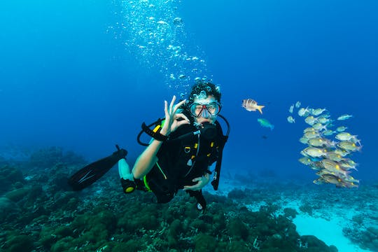 Diving package from RIU Atoll and RIU Palace Maldivas