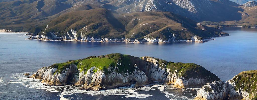 Vol panoramique et croisière dans le sud-ouest de la nature sauvage avec déjeuner