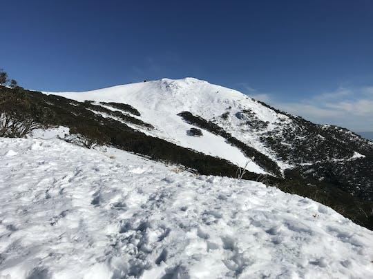 Passeio de um dia de neve no Monte Buller