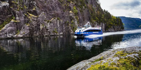 Mostraumen and Osterfjord half-day cruise