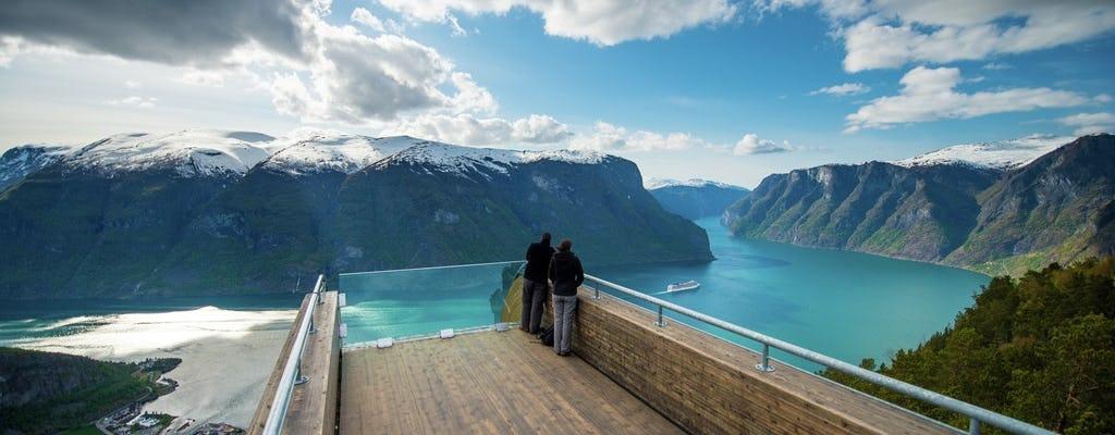 Tour privado de um dia a Oslo com um cruzeiro premium no fiorde de Nærøy e a ferrovia Flåm