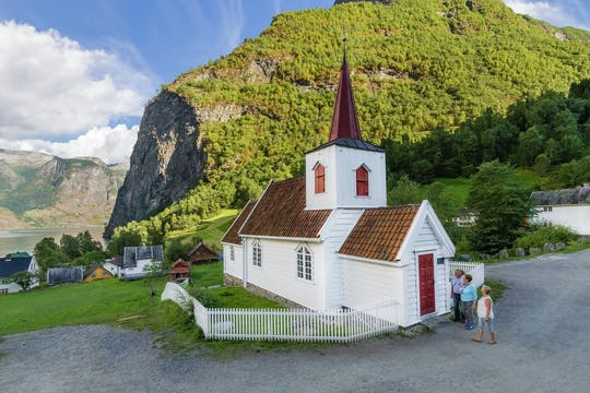 Private day-tour to Undredal with a premium Fjord cruise and the Stegastein viewpoint