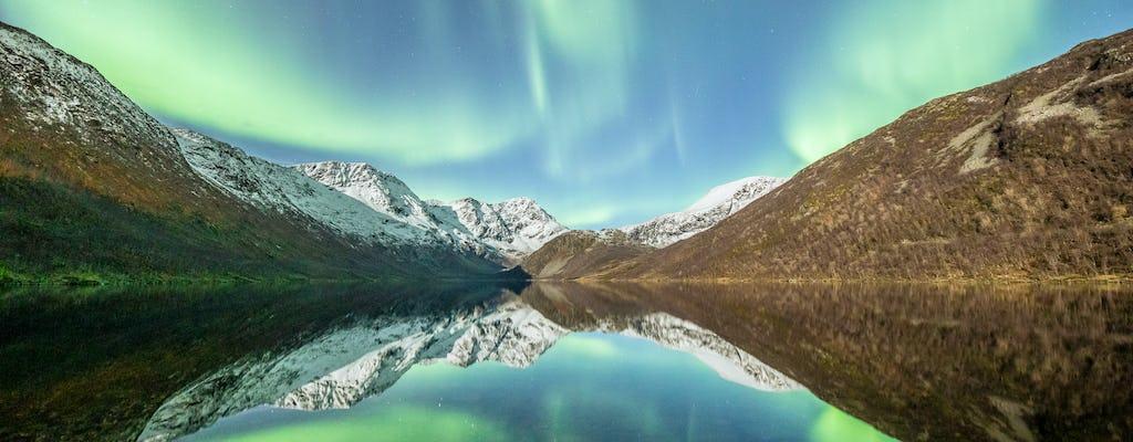 Tour dell'aurora boreale con un piccolo gruppo a Tromsø