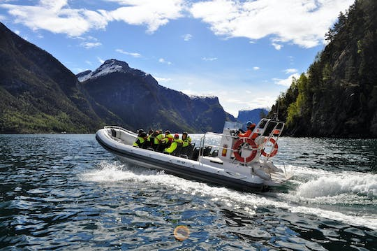 Private guided day-tour to Sognefjorden and Flåm with a Fjord safari
