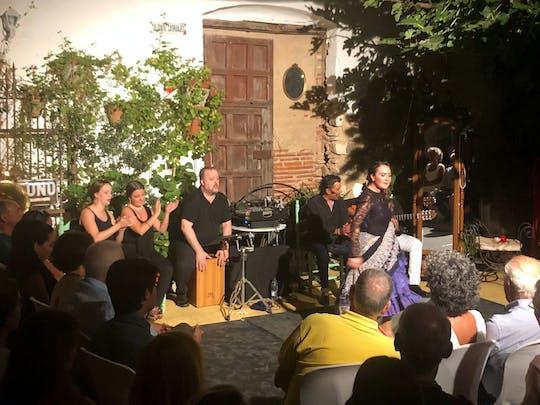 Vive Ayamonte Flamenco Show - bilet z tapas