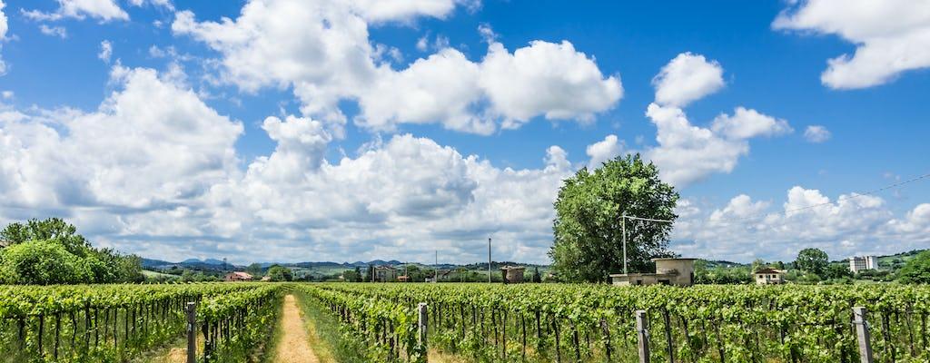 Wijnproeverij bij Villa Venti
