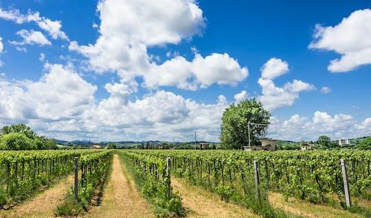 Дегустация вин опыт в Villa Венти