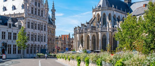 Walking tour in Leuven with a self-guided city trail