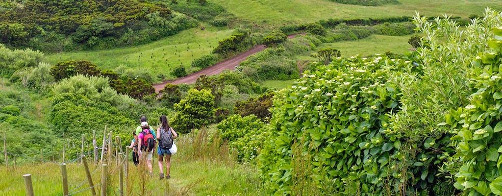 Halbtägige Ribeirinha-Wanderung in Faial