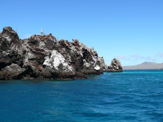 Dagtour naar het eiland Pinzón met snorkelen, vissen en excursie naar La Fe