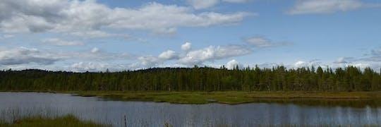 Natuurwandeling met lokale bioloog die het oude bos en de modder verkent