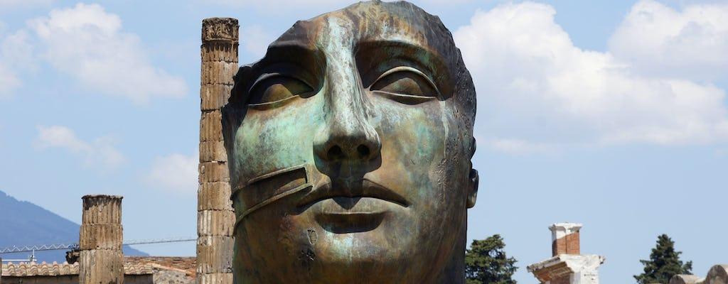 Halve Dag Pompeï