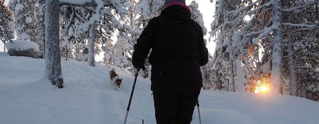 Wintersneeuwschoenwandeling door het bos met een plaatselijke bioloog