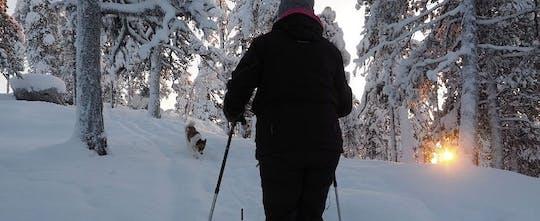 Caminhada de inverno com raquetes de neve explorando a floresta com um biólogo local