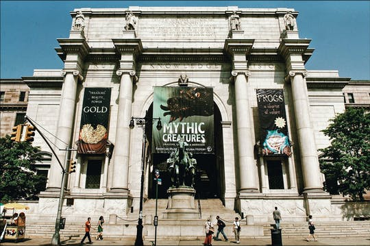 Private American Museum of Natural History skip-the-line tour