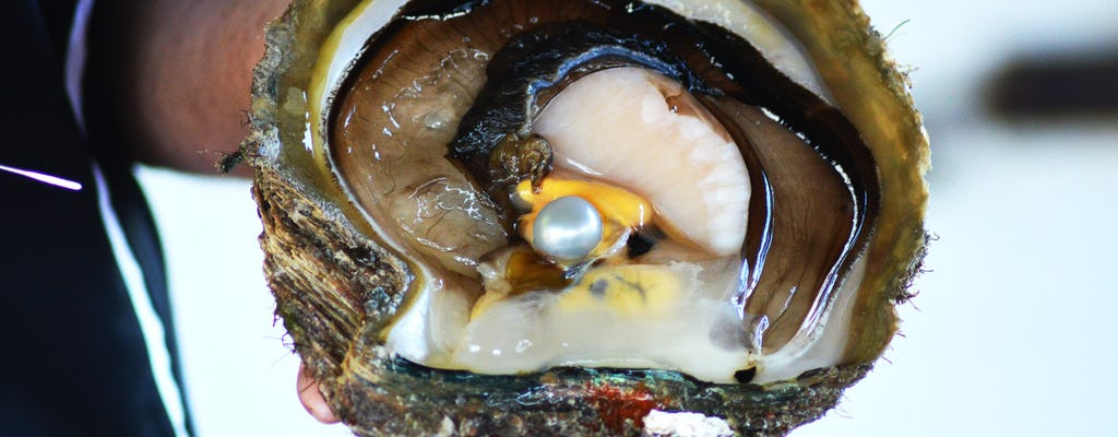 Esperienza di raccolta delle perle dal vivo