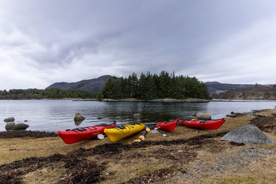 Guided Jørpeland fjord tour by kayak