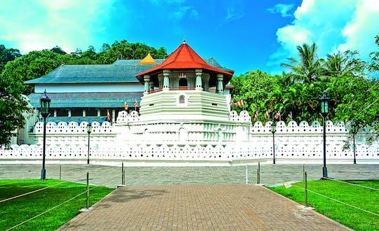 Recorrido histórico por el templo de Kandy y el Palacio Real de Kandy