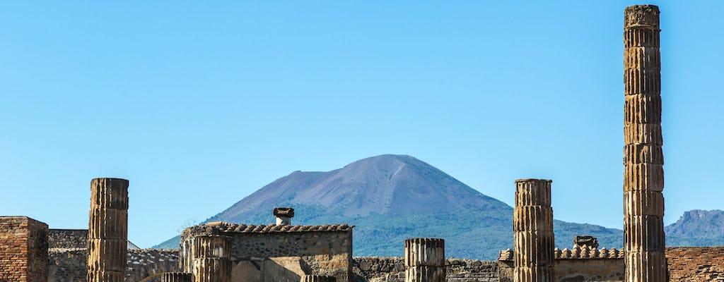 Pompeii & Vesuvius Wine Tour
