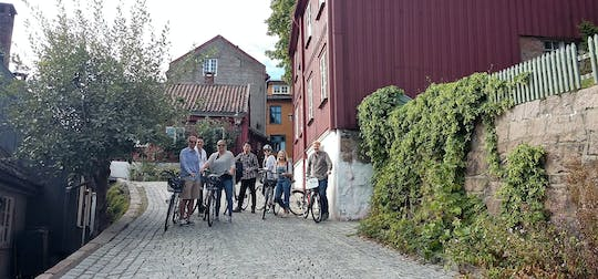 Private 2-hour bike tour in Oslo
