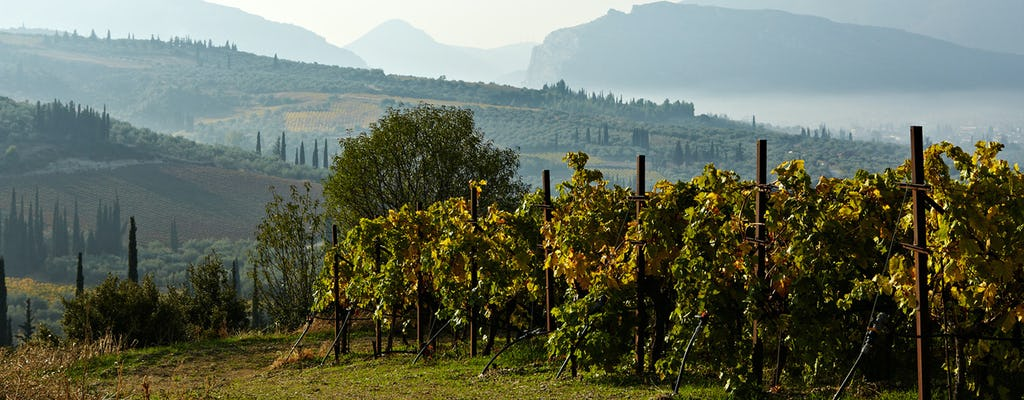 Tagestour mit Essen und Wein auf dem Peloponnes