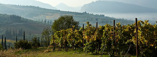 Food and wine day tour in the Peloponnese