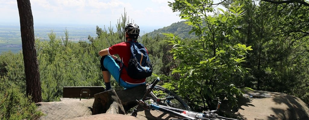 Daily mountain bike rental in the Ore Mountains