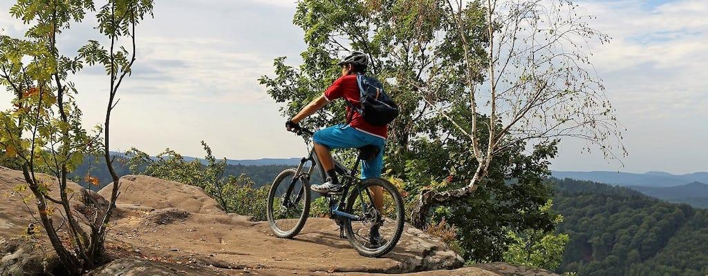 Multi-daily mountain bike rental in the Ore Mountains