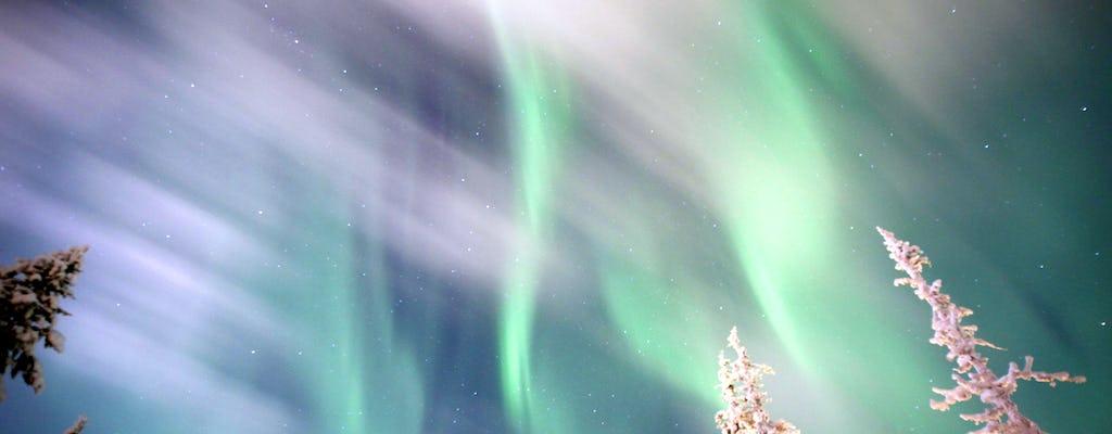 Aurora caçada em um snowmobile de Saariselkä