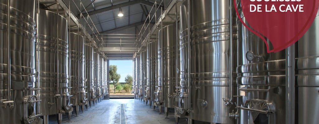 Visita guiada al viñedo de Flaugergues