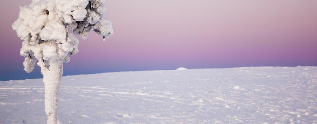Kulig na skuterach śnieżnych po fińskiej Laponii