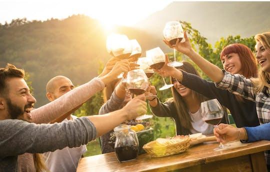 Degustação de vinhos Chianti em grupo pequeno e jantar no vinhedo