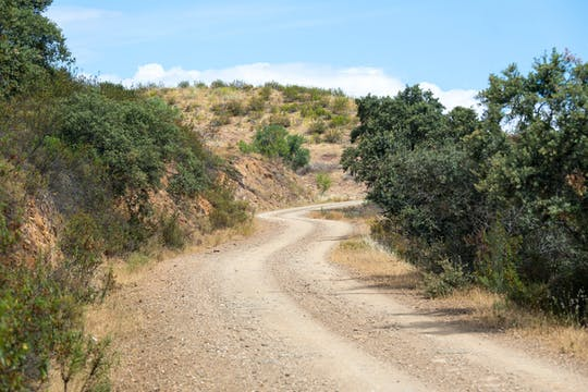 Offroad-Safari