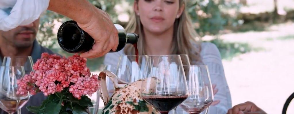 Private Weinprobe und Mittagessen auf einem Bio-Bauernhof in der Toskana