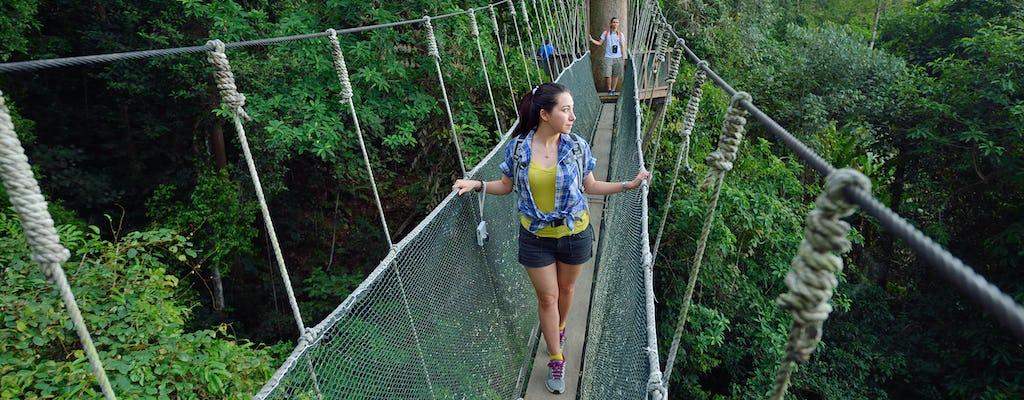 Całodniowa wycieczka do parku Kinabalu i gorących źródeł Poring