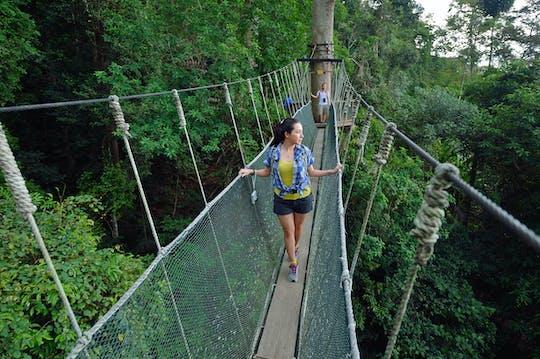Excursão de dia inteiro no Parque Kinabalu e nas Termas de Poring
