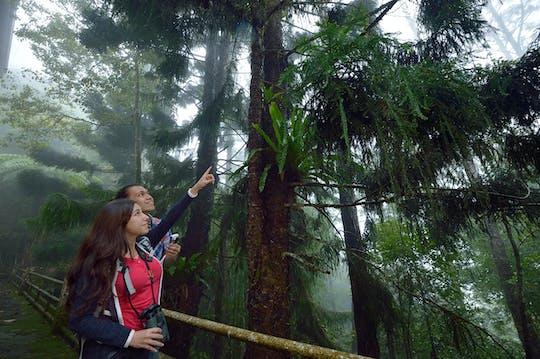 Całodniowy park Kinabalu i gorące źródła Poring