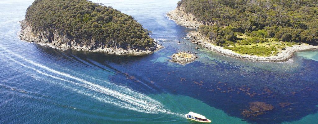 Bruny Island 3 Stunden Wildniskreuzfahrt