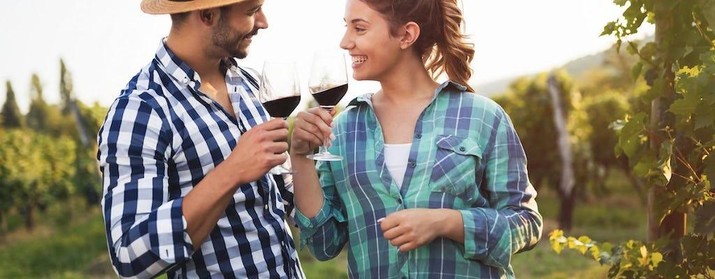 Esperienza di degustazione di vini per piccoli gruppi nella campagna del Chianti