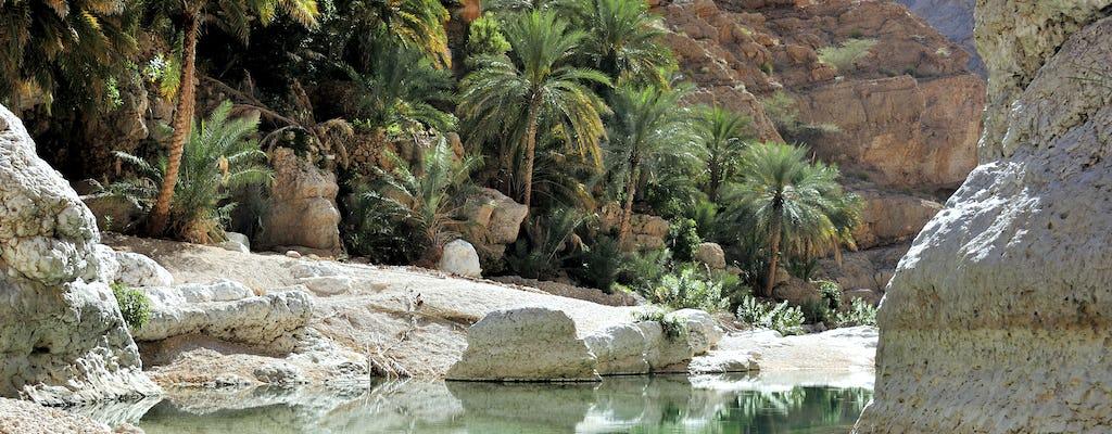 Scopri il sud e il Wadi Shab