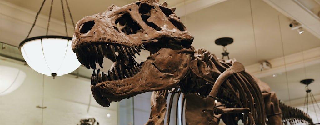 Tour combinado semiprivado del Museo Metropolitano de Arte y el Museo Americano de Historia Natural